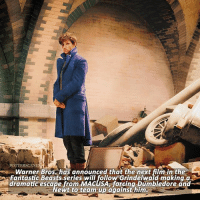 NEWS | Warner Bros. has announced the basic plot of the next Fantastic Beasts film! Principle photography began today!: POTTERSCENES  Warner Bros. has announced that the next film in the  aFantastic Beasts series will follow Grindelwald making q  dramatic escape from MACUSA, forcing Dumbledore and  ewt to team-up against him NEWS | Warner Bros. has announced the basic plot of the next Fantastic Beasts film! Principle photography began today!