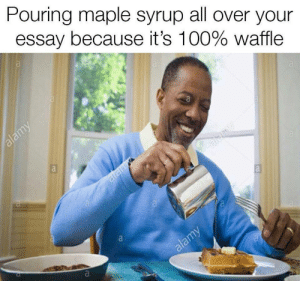 Anaconda, Tumblr, and Http: Pouring maple syrup all over your  essay because it's 100% Waffle If you are a student Follow @studentlifeproblems​