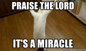 [Image: thumb_praise-thelord-its-a-miracle-memeg...766860.png]