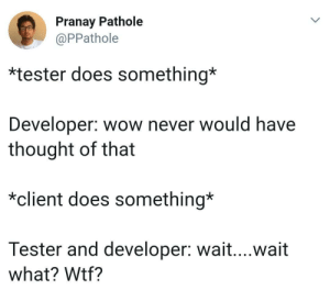 Wow, Wtf, and Never: Pranay Pathole  @PPathole  *tester does something*  Developer: wow never would have  thought of that  *client does something*  Tester and developer: wait....wait  what? Wtf? Thats client in a nutshell