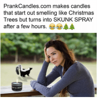 RUIN SOMEBODY'S CHRISTMAS WITH A PRANK CANDLE THAT SMELLS LIKE XMAS 'TIL IT DOESN'T 😂😂🎄🎄@prankcandles Get yours at link in bio sp: PrankCandles.com makes candles  that start out smelling like Christmas  Trees but turns into SKUNK SPRAY  after a few hours.岑岑參  AM & CEDA RUIN SOMEBODY'S CHRISTMAS WITH A PRANK CANDLE THAT SMELLS LIKE XMAS 'TIL IT DOESN'T 😂😂🎄🎄@prankcandles Get yours at link in bio sp