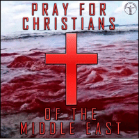 In the last six years, Syria and Iraq have lost more than a half of their Christian population. These Middle Eastern Christians are suffering like the first martyrs and they get absolutely no help from the civilized world. This genocide became possible due to what our government has been doing for many decades, providing all kinds of help for Islamic extrimists who hate all members of other religions and hunt them regularily. Billions of dollars were spent on various branches of anti-Assad and terrorist groups though Christians from the Middle East couldn't get any help including asylum. However, muslim refugees got everything they wanted. I really hope current authorities would regain sanity, stop supporting terrorists and bombing the governmental forces, otherwise we would see total annihilation of Christianity in the region. Bible sonofgod424 God Love Redeemed Saved Christian Christianity Pray Chosen jesus lord truth praying christ jesuschrist bible word godly angels cross faith inspiration jesussaves worship yahweh holyspirit praise spiritualwarfare: PRAY FOR  CHRISTIA  OF THE  MIDDLE EAST In the last six years, Syria and Iraq have lost more than a half of their Christian population. These Middle Eastern Christians are suffering like the first martyrs and they get absolutely no help from the civilized world. This genocide became possible due to what our government has been doing for many decades, providing all kinds of help for Islamic extrimists who hate all members of other religions and hunt them regularily. Billions of dollars were spent on various branches of anti-Assad and terrorist groups though Christians from the Middle East couldn't get any help including asylum. However, muslim refugees got everything they wanted. I really hope current authorities would regain sanity, stop supporting terrorists and bombing the governmental forces, otherwise we would see total annihilation of Christianity in the region. Bible sonofgod424 God Love Redeemed Saved Christi