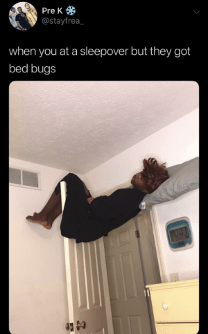 Taking no chances by KingPZe MORE MEMES: Pre K  @stayfrea_  when you at a sleepover but they got  bed bugs  HOOK  2 PR 18 Taking no chances by KingPZe MORE MEMES