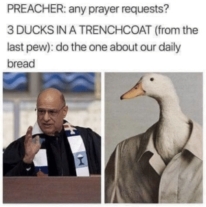 youlovetoseeit:quackers: PREACHER: any prayer requests?  3 DUCKS IN A TRENCHCOAT (from the  last pew): do the one about our daily  bread youlovetoseeit:quackers