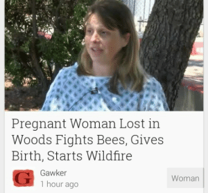 Beese: Pregnant Woman Lost in  Woods Fights Bees, Gives  Birth, Starts Wildfire  Gawker  1 hour ago  Woman