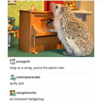 Memes, Hedgehog, and Piano: prepgoth  sing us a song, youre the piano man  outerspacecake  quilly joel  songoharotto  an innocent hedgehog