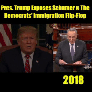 Memes, Immigration, and Trump: Pres. Trump Exposes Schumer & The  Democrats' Immigration Flip-Flop  2018 President Donald J. Trump exposed Sen. Schumer and the Democrats' blatant flip-flop on immigration and border security...