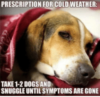 😊: PRESCRIPTION FOR COLD WEATHER.  TAKE 1-2 DOGS AND  SNUGGLEUNTILSYMPTOMS ARE GONE 😊
