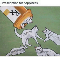 Meme, Humans of Tumblr, and Happiness: Prescription for happiness  meme  eme  meme  .meme