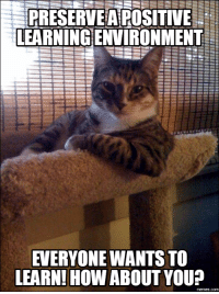PRESERVE A POSITIVE  LEARNING ENVIRONMENT  EVERYONE WANTS TO  LEARN! HOW  ABOUT YOU  memes com