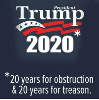 Treason, President, and For: President  Trum  2020*  *  20 years for obstruction  & 20 years for treason.