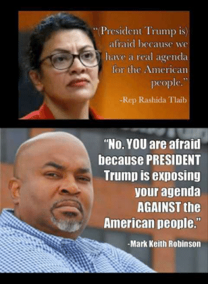 """owning the libs in 240p: *President Trump is)  afraid because we  have a real agenda  for the American  people.""""  -Rep Rashida Tlaib  """"No. YOU are afraid  because PRESIDENT  Trump is exposing  your agenda  AGAINST the  American people.""""  -Mark Keith Robinson owning the libs in 240p"""