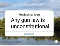 Memes, 🤖, and Gun: Presidential Alert  Any gun law is  unconstitutional  Dismiss