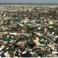 pressplay yes, we know this isn't about rap music. This post is dedicated to keeping yours and our environment safe. Recycle people ♻️ Tag a friend who needs to see this 👇: pressplay yes, we know this isn't about rap music. This post is dedicated to keeping yours and our environment safe. Recycle people ♻️ Tag a friend who needs to see this 👇