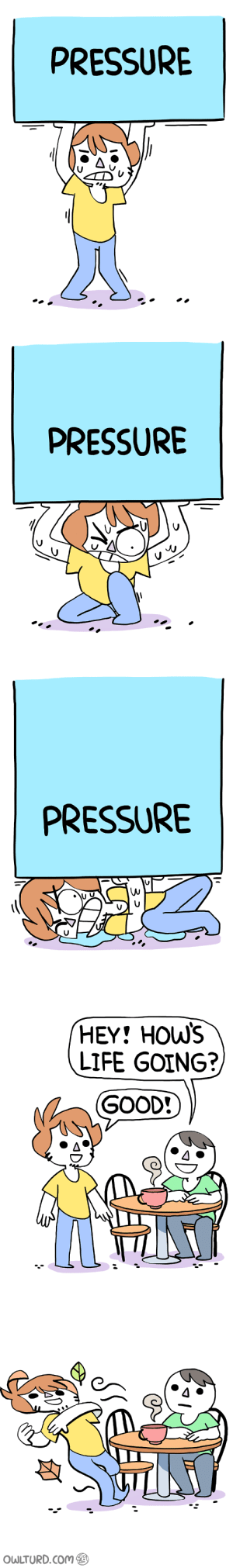 Life, Pressure, and Good: PRESSURE   PRESSURE   PRESSURE   HEY! HOw's  LIFE GOING?  GOOD!   OWLTURD.Com