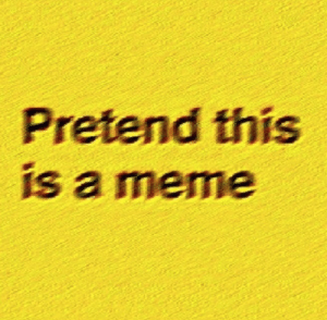 Meme, This, and This Is: Pretend this  is a meme Pretend this is a meme
