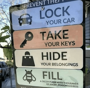 Angry, Belongings, and Bees: PREVENT  SLOCK  YOUR CAR  TAKE  YOUR KEYS  HIDE  YOUR BELONGINGS  FILL  A DECOY PURSE WITH THOUSANDS  OF ANGRY,POISONOUS BEES  IS