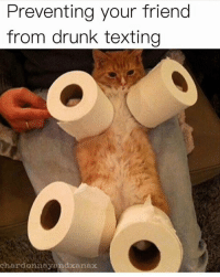 Drunk, Memes, and Texting: Preventing your friend  from drunk texting  chardonneyendxanax please fren, don't do it (@chardonnayandxanax 👈 follow follow follow)