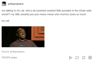 Bitch, Pumpkin, and World: prideprejudce  me talking to my cat: who's da sweetest weetest little pumpkin in the whole wide  world?? my little sweetie poo poo meow meow who mommy luves so much  Bitch  Source: prideprejudce  119,972 notes xkcd #231