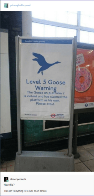 Storm Emma, The Beast From The East and now this. London is screwed I tell you.: primarybufferpanel  London  Level 5 Goose  Warning  The Goose on platform 2  is violent and has claimed the  platform as his own.  Please avoid.  eleneripenneth  Now this?  This isn't anything I've ever seen before Storm Emma, The Beast From The East and now this. London is screwed I tell you.