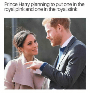 Prince, Prince Harry, and Pink: Prince Harry planning to put one in the  royal pink and one in the royal stink Royal stink