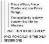 THIS! 😂😂: Prince William, Prince  Charles, and now Prince  George...  The royal family is slowly  transforming into the  Weasleys.  AND THEN THERE'S HARRY  WHO IRONICALLY IS THE ONLY  GINGER ONE THIS! 😂😂