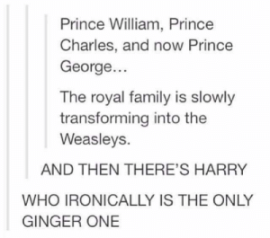 40 Harry Potter Jokes That Will Never Not Be Hilarious: Prince William, Prince  Charles, and now Prince  George...  The royal family is slowly  transforming into the  Weasleys.  AND THEN THERE'S HARRY  WHO IRONICALLY IS THE ONLY  GINGER ONE 40 Harry Potter Jokes That Will Never Not Be Hilarious