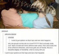 Beautiful, Friends, and Girls: princess: dakota:  soluring  want to put spiders on their laps and see what happens  why are people on this site so mean??????? this is actually really  cool, that's a braid with three different hair colors, from what looks like  three different ethnicities. and those girls are all friends, this is a  beautiful display of friendship. what is wrong with you  want to put spiders on their laps and see what happens https://t.co/MPosq1qHrF