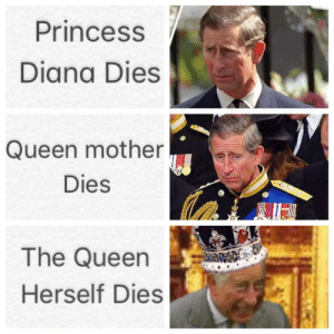 Bad, Fucking, and Tumblr: Princess  Diana Dies  Queen mother  Dies  The Queen  Herself Dies awesomesthesia:  Too bad the queen is fucking immortal.