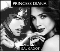 Beautiful, Memes, and Thank You: PRINCESS DIANA  VAUGHN  DER GAL GADOT Breathtakingly beautiful as always! @gal_gadot you are a role model and inspiration. Thank you for everything you have done and for all that you will do with this character! *** mywonderwoman girlpower women femaleempowerment MulherMaravilha MujerMaravilla galgadot unitetheleague princessdiana dianaprince amazons amazonwarrior manofsteel thedarkknight