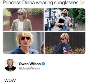 Wow is right by The0rangeOne MORE MEMES: Princess Diana wearing sunglasses  EXIT  Owen Wilson  @OwenWilson  WOW Wow is right by The0rangeOne MORE MEMES