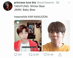 : princess luvs bts @outroteavre 3d  TAEHYUNG: Winter Bear  JIMIN: Baby Bear  meanwhile KIIM NAMJOON:  OriginaFake  DENY  ERCO  My mom calls me a stupid bear.  L23.5K  321  61.4K