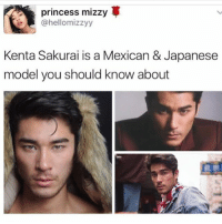 Memes, Princess, and Japanese: princess mizzy  ahellomizzyy  Kenta Sakurai is a Mexican & Japanese  model you should know about  武宗 😍😍