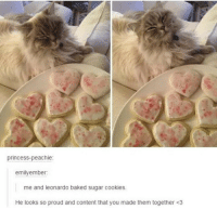 Baked, Cookies, and Princess: princess-peachie:  emilyember  me and leonardo baked sugar cookies.  He looks so proud and content that you made them together <3
