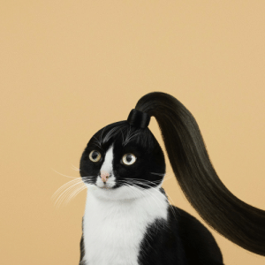 Target, Tumblr, and Blog: princesscheeto: You like my hair? Gee, thanks, just bought it.