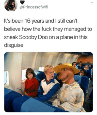 Memes, Scooby Doo, and Fuck: @Princessofwif  It's been 16 years and I still can'i  believe how the fuck they managed to  sneak Scooby Doo on a plane in this  disguise 🤣Damn