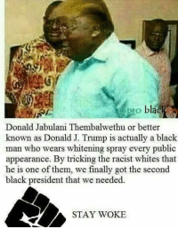 """Dank, Meme, and Black: pro blac  Donald Jabulani Thembalwethu or better  known as Donald J. Trump is actually a black  man who wears whitening  appearance. By tricking the racist whites that  he is one of them, we finally got the second  black president that we needed.  spray every public  STAY WOKE <p>Stay woke via /r/dank_meme <a href=""""http://ift.tt/2lXXPB4"""">http://ift.tt/2lXXPB4</a></p>"""