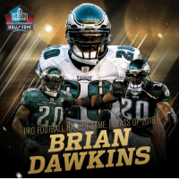 .@BrianDawkins is heading to the @ProFootballHOF! #PFHOF18 https://t.co/C7cJc3IpR4: PRO FOOTBALL  HALLF FAME  RO FOOTBAL HALL OF FAME | CLASS OF 201  BRIAW  DAWKINS  P  8 .@BrianDawkins is heading to the @ProFootballHOF! #PFHOF18 https://t.co/C7cJc3IpR4