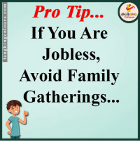 Pro Tip: Pro Tip  If You Are  Jobless  Avoid Family  Gatherings...