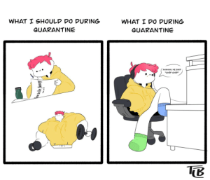 Productivity in quarantine [OC]: Productivity in quarantine [OC]