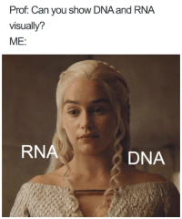 Doctor, Memes, and Best: Prof: Can you show DNA and RNA  visually?  ME:  RNA  DNA 20+ Doctor Memes Are The Best Medicine If You Need A Laugh