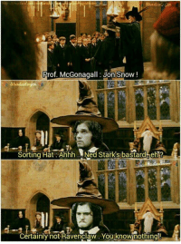 Memes, Shade, and Jon Snow: Prof. McGonagall: Jon Snow  Shades  aspen  Sorting Hat Ahhh Nad Starks bastard eh 1  Certainly not Ravenclaw. Youknownothingl!