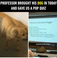 9gag, Dank, and Dogs: PROFESSOR BROUGHT HIS DOG IN TODAY  AND GAVE US A POP QUIZ  How do you feel about Maggie?  A She's a good dog  S She's a very good dog, yes she is  C Shes the best dog  D. She is the Platonic ideal of a dog  Edont e dogs, but despite my generalized  cslike of al things canine, I make an exception  for Magsie,because that's how great she is.  Attendance for today Maggie the perfect doggo!  https://9gag.com/gag/a24224e/sc/funny?ref=fbsc