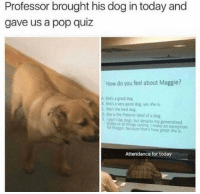 Dogs, Memes, and Pop: Professor brought his dog in today and  gave us a pop quiz  How do you feel about Maggie?  A. Shes a good dog  泓 's avery good dog, yes she is.  C Shes the best dog.  o She is the Platonic ideal of a dog  Edontlke dogs, but despite my generalized  k of a things canine, I make an exception  br Maggie, because that's how great she is  Attendance for today https://t.co/L79qZb4aUo
