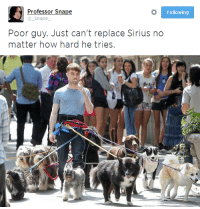 Sirius, How, and Snape: Professor Snape  @_Snape  Following  Poor guy. Just can't replace Sirius no  matter how hard he trioes.