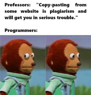 "lol ..: Professors: ""Copy-pasting from  some website is plagiarism and  will get you in serious trouble.""  Programmers:  (@CodeDoesMeme lol .."