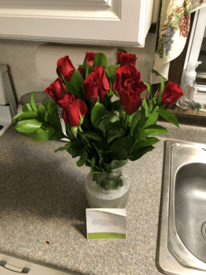 Chewy.com sent my parents flowers after their cat died: ProFiewers  1.580 Fesesises  Were so ery to hove f s  s nr  here if you eed anyekineg  Chewy com  Low S  WEGIN Chewy.com sent my parents flowers after their cat died