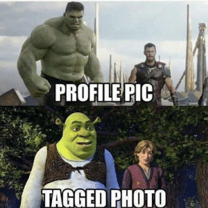 Funny, True, and Tagged: PROFILE PIC  TAGGED PHOTO So true via /r/funny https://ift.tt/2OV1WIH