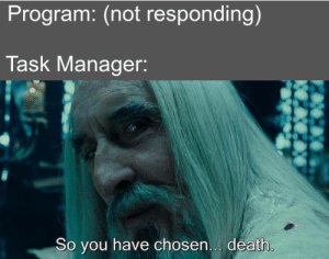 Program: My time has come.: Program: (not responding)  Task Manager:  So you have chosen... death. Program: My time has come.