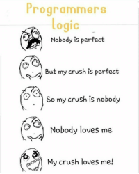 perfect: Programmers  ogic  Nobody is perfect  But my crush is perfect  So my crush is nobody  Nobody loves me  My crush loves me!